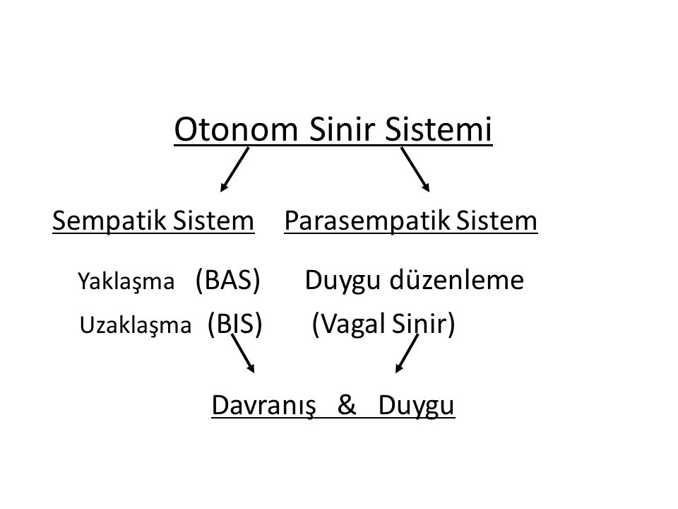 Otonom Sinir Sistemi Uzaklaşma (BIS) (Vagal Sinir) Davranış & Duygu