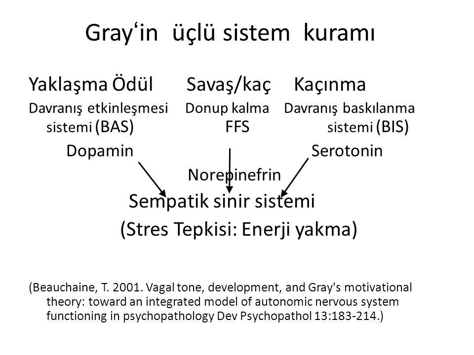 Gray'in üçlü sistem kuramı