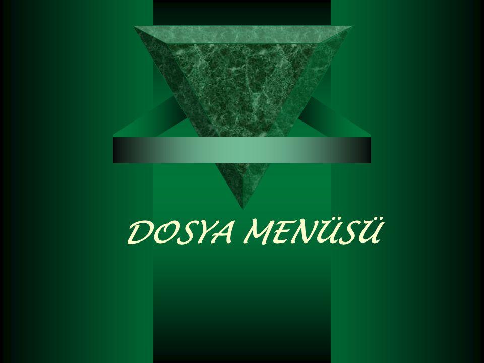 DOSYA MENÜSÜ