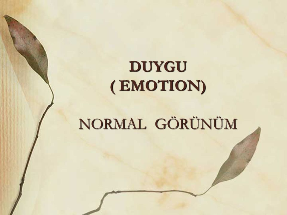 DUYGU ( EMOTION) NORMAL GÖRÜNÜM