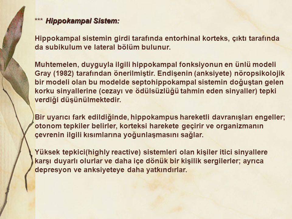 *** Hippokampal Sistem: