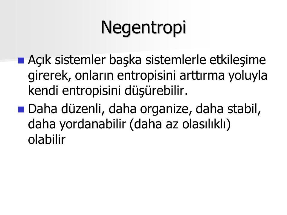 Negentropi Açık sistemler başka sistemlerle etkileşime girerek, onların entropisini arttırma yoluyla kendi entropisini düşürebilir.