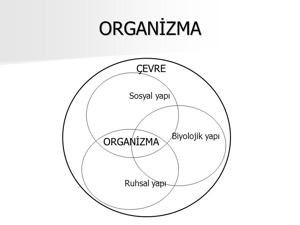 ORGANİZMA ÇEVRE Sosyal yapı Biyolojik yapı ORGANİZMA Ruhsal yapı