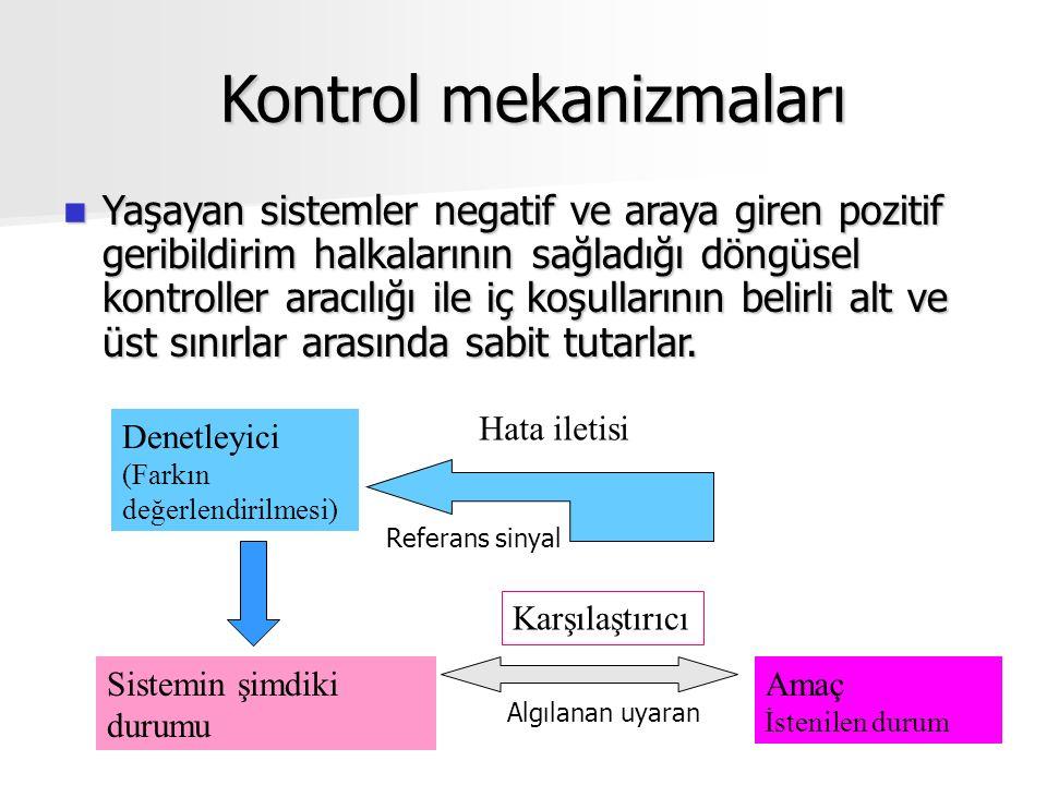 Kontrol mekanizmaları