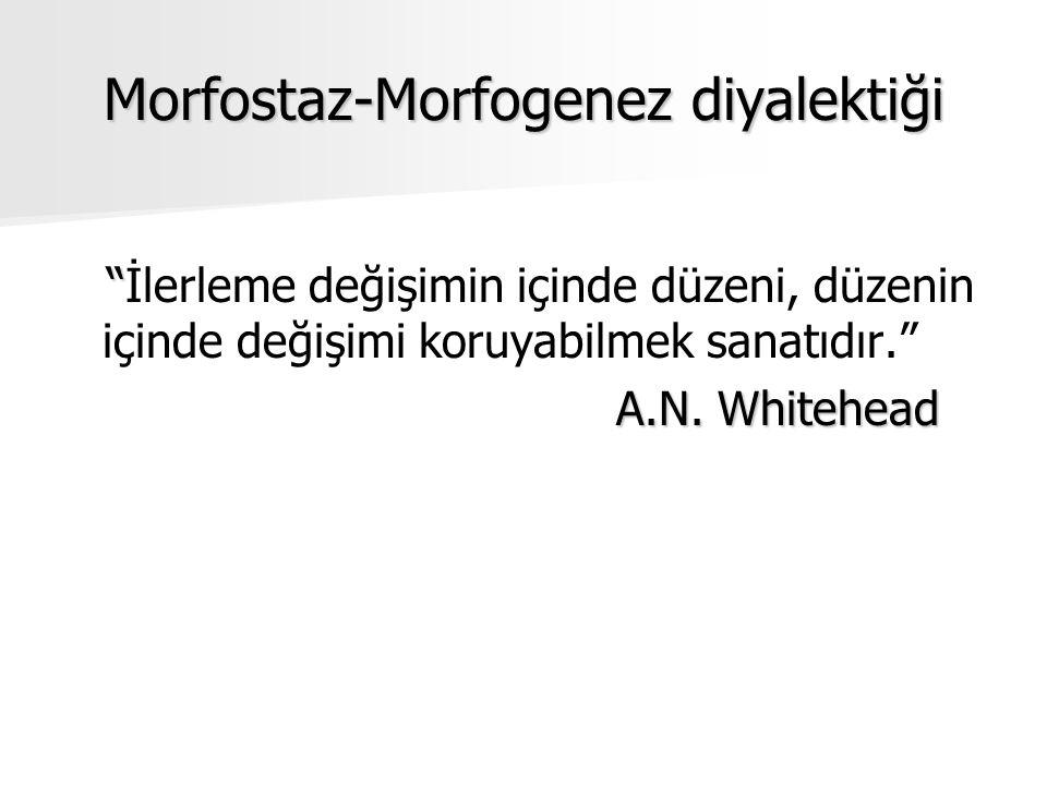 Morfostaz-Morfogenez diyalektiği