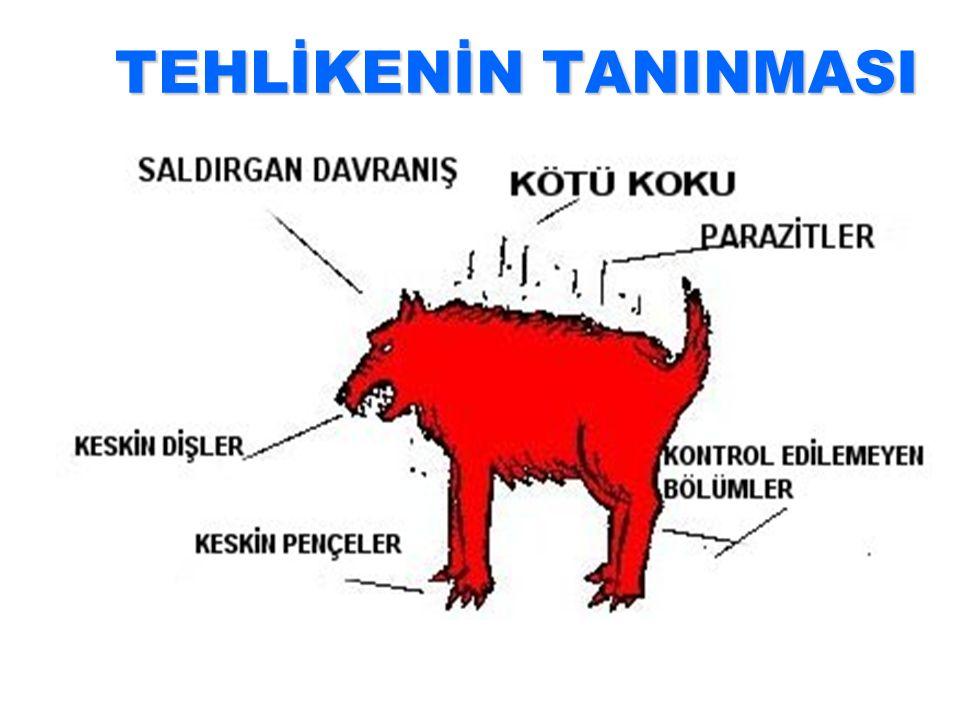 TEHLİKENİN TANINMASI