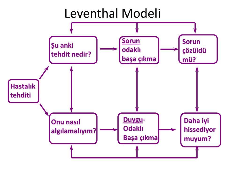 Leventhal Modeli Sorun Sorun Şu anki odaklı çözüldü tehdit nedir