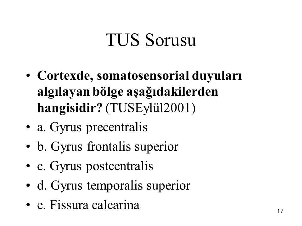 TUS Sorusu Cortexde, somatosensorial duyuları algılayan bölge aşağıdakilerden hangisidir (TUSEylül2001)