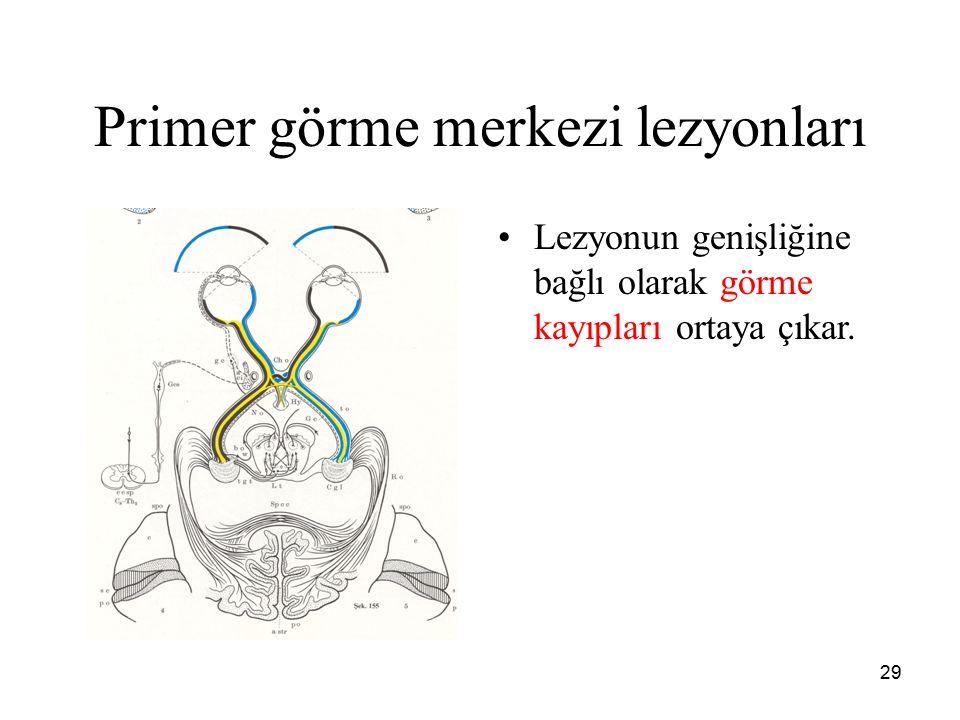 Primer görme merkezi lezyonları