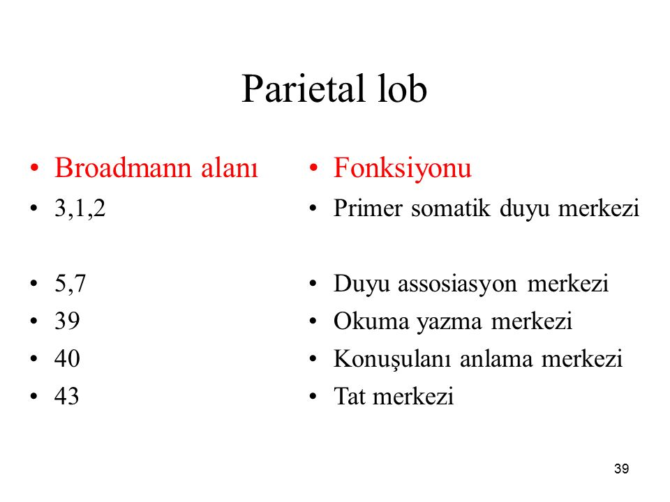 Parietal lob Broadmann alanı Fonksiyonu 3,1,2 5,7 39 40 43