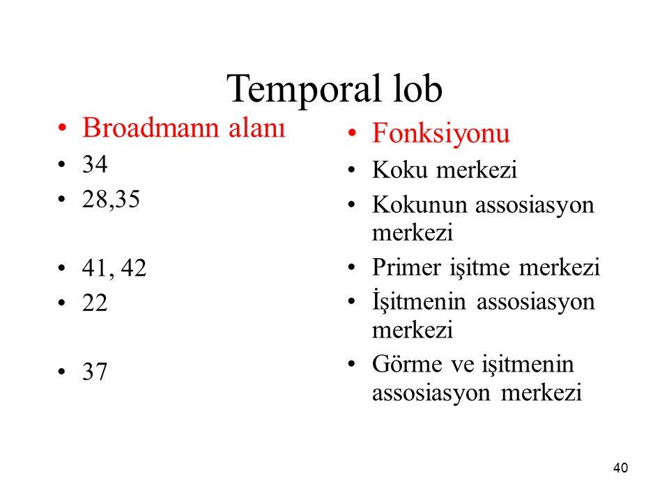 Temporal lob Broadmann alanı Fonksiyonu 34 Koku merkezi 28,35