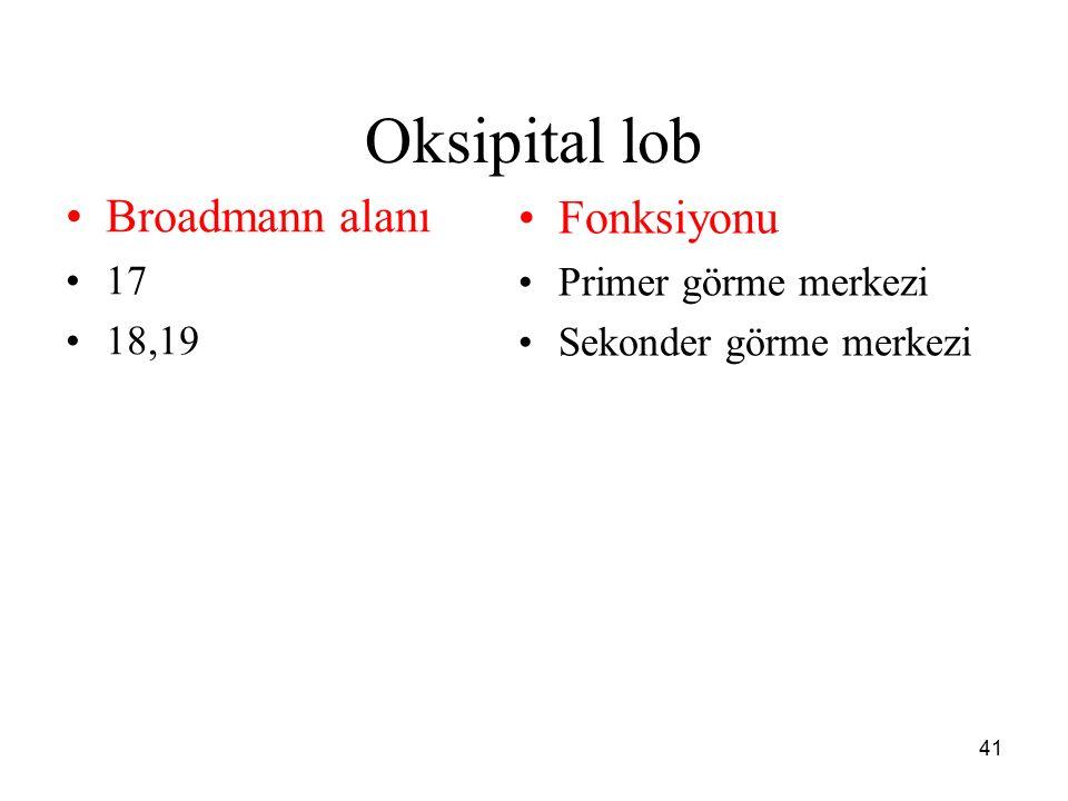 Oksipital lob Broadmann alanı Fonksiyonu 17 Primer görme merkezi 18,19