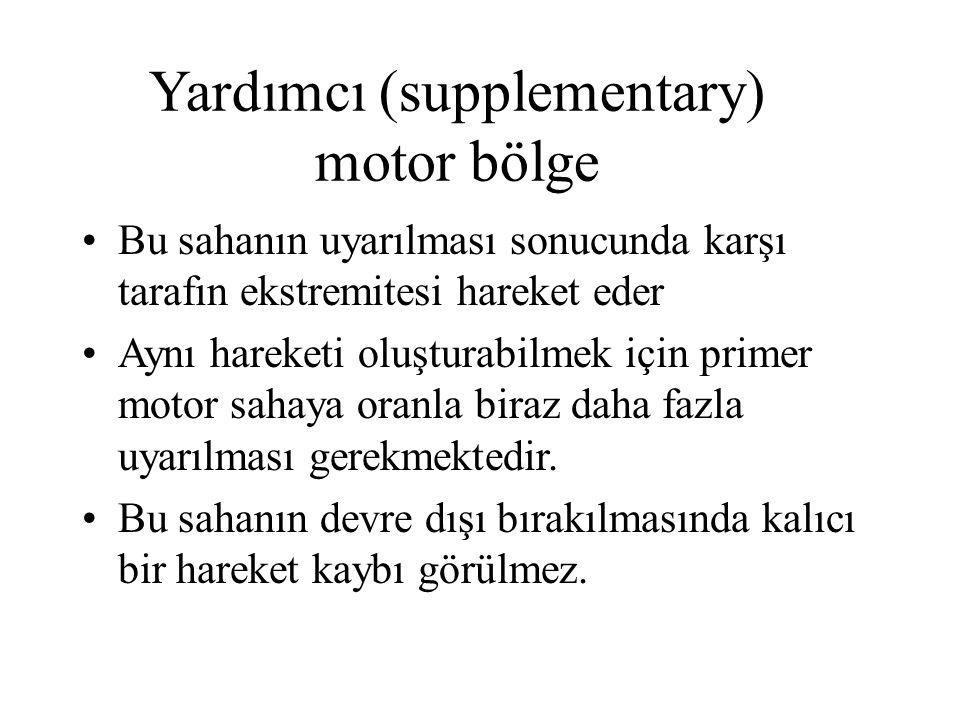 Yardımcı (supplementary) motor bölge