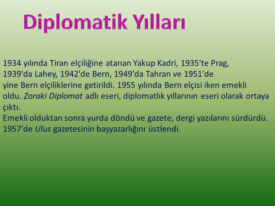 Diplomatik Yılları
