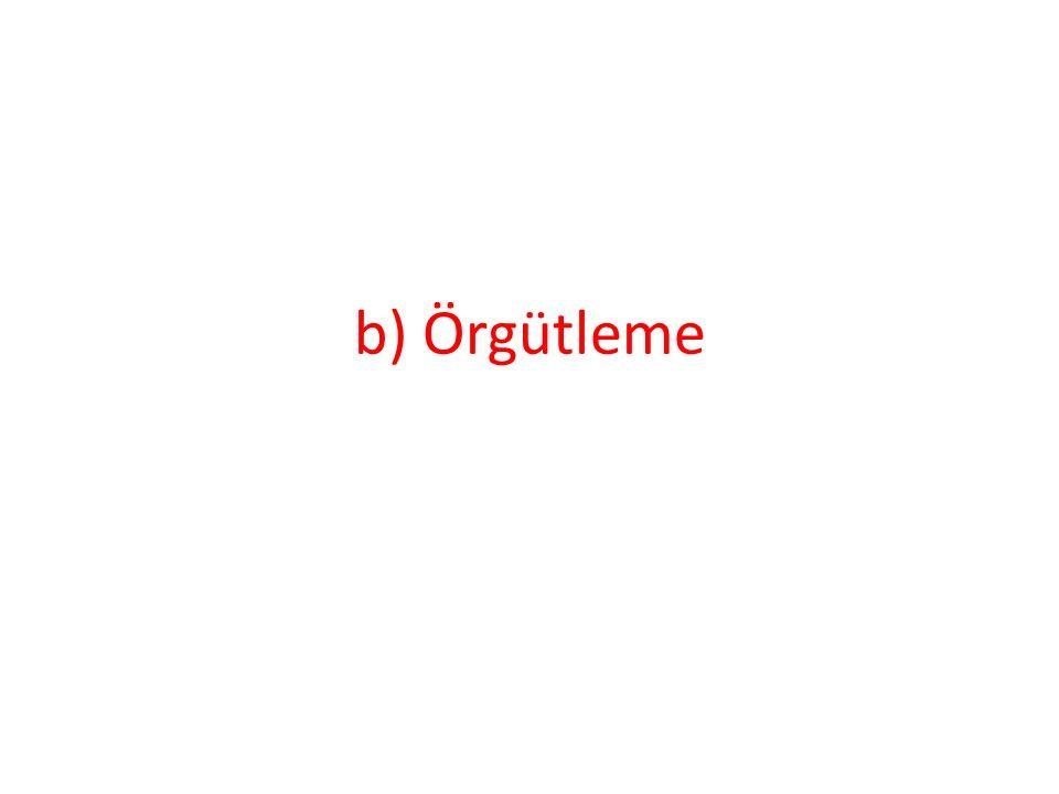 b) Örgütleme