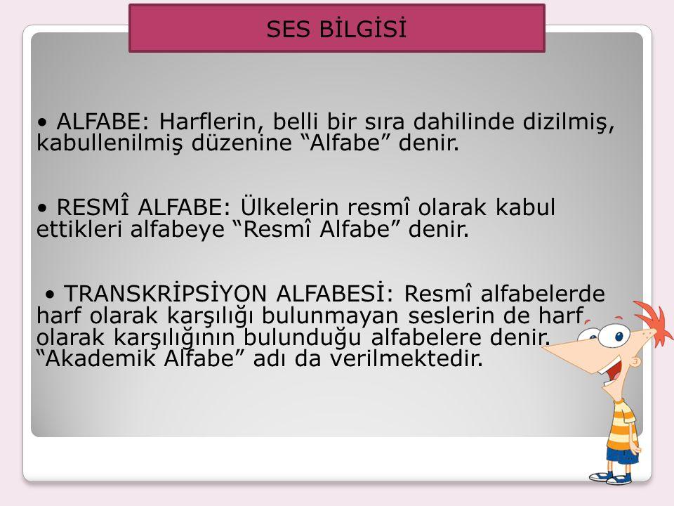 SES BİLGİSİ • ALFABE: Harflerin, belli bir sıra dahilinde dizilmiş, kabullenilmiş düzenine Alfabe denir.