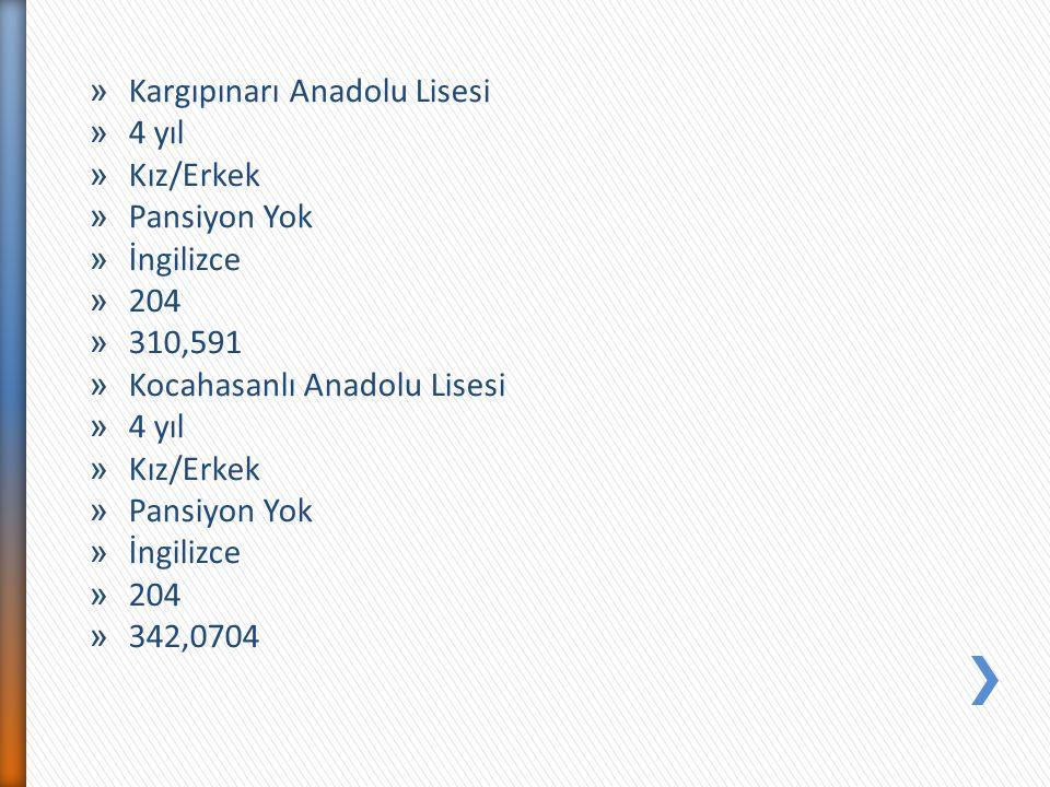 Kargıpınarı Anadolu Lisesi