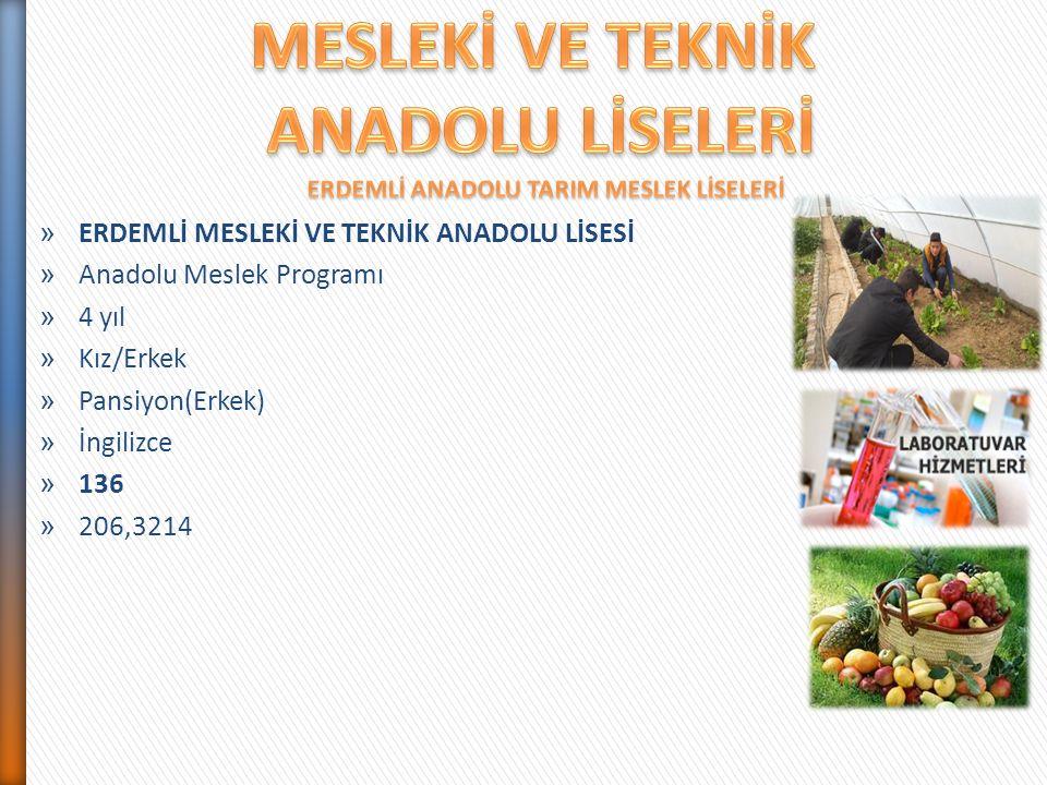 ERDEMLİ ANADOLU TARIM MESLEK LİSELERİ