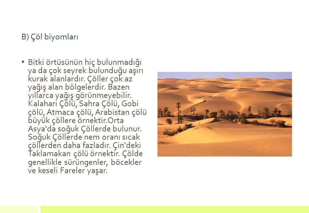 B) Çöl biyomları