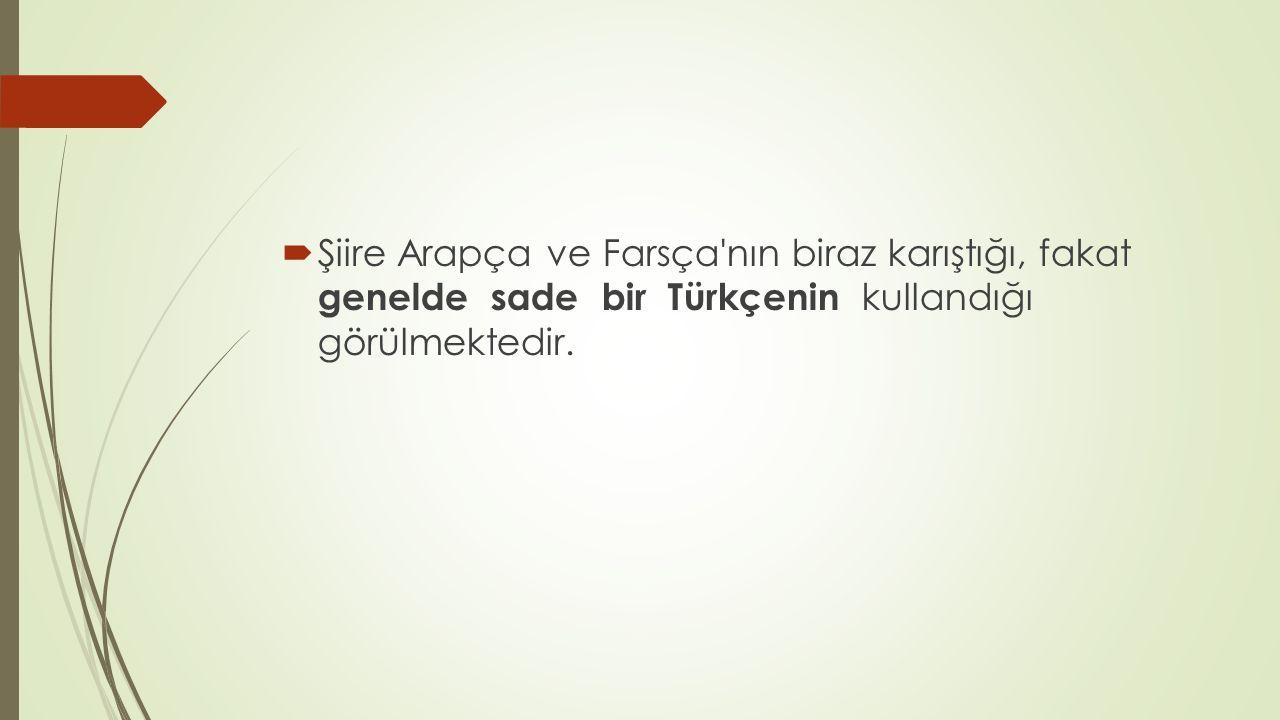 Şiire Arapça ve Farsça nın biraz karıştığı, fakat genelde sade bir Türkçenin kullandığı görülmektedir.