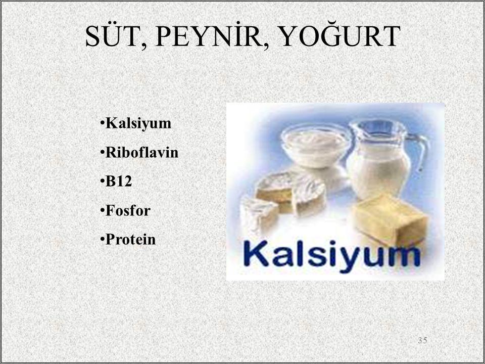 SÜT, PEYNİR, YOĞURT Kalsiyum Riboflavin B12 Fosfor Protein