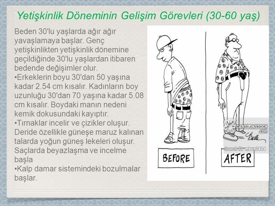 Yetişkinlik Döneminin Gelişim Görevleri (30-60 yaş)