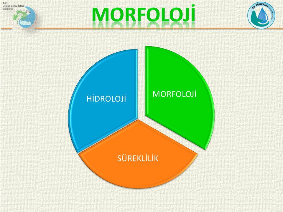 MORFOLOJİ MORFOLOJİ SÜREKLİLİK HİDROLOJİ