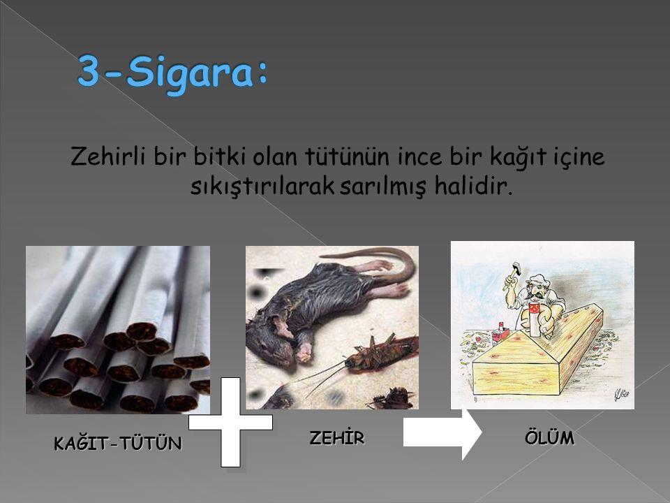 3-Sigara: Zehirli bir bitki olan tütünün ince bir kağıt içine sıkıştırılarak sarılmış halidir. ZEHİR.
