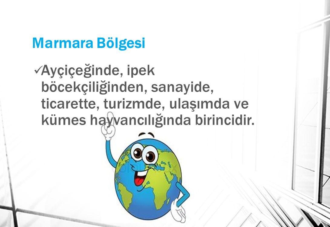 Marmara Bölgesi Ayçiçeğinde, ipek böcekçiliğinden, sanayide, ticarette, turizmde, ulaşımda ve kümes hayvancılığında birincidir.
