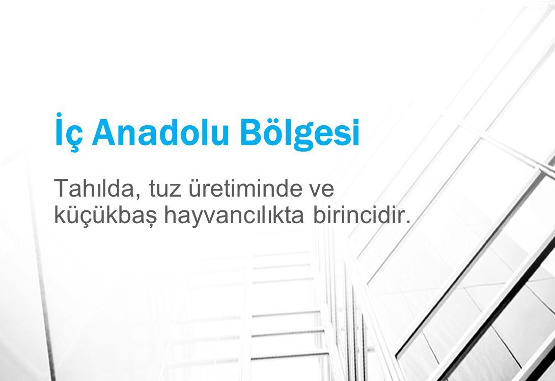 İç Anadolu Bölgesi Tahılda, tuz üretiminde ve küçükbaş hayvancılıkta birincidir.