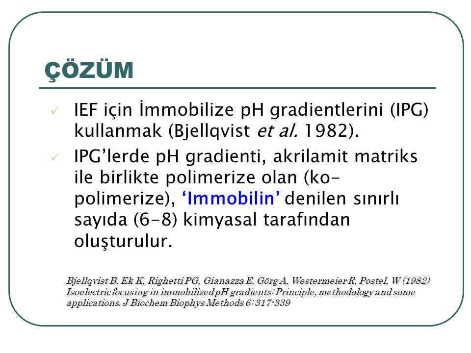 ÇÖZÜM IEF için İmmobilize pH gradientlerini (IPG) kullanmak (Bjellqvist et al. 1982).