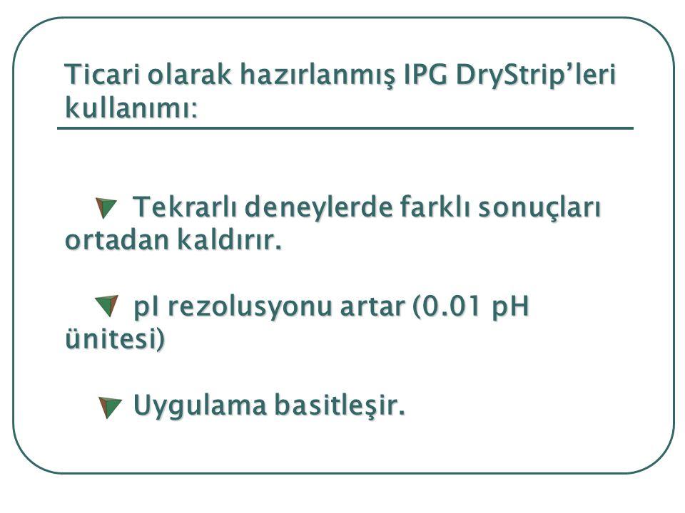 Ticari olarak hazırlanmış IPG DryStrip'leri kullanımı: