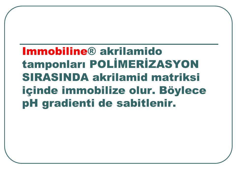 Immobiline® akrilamido tamponları POLİMERİZASYON SIRASINDA akrilamid matriksi içinde immobilize olur.