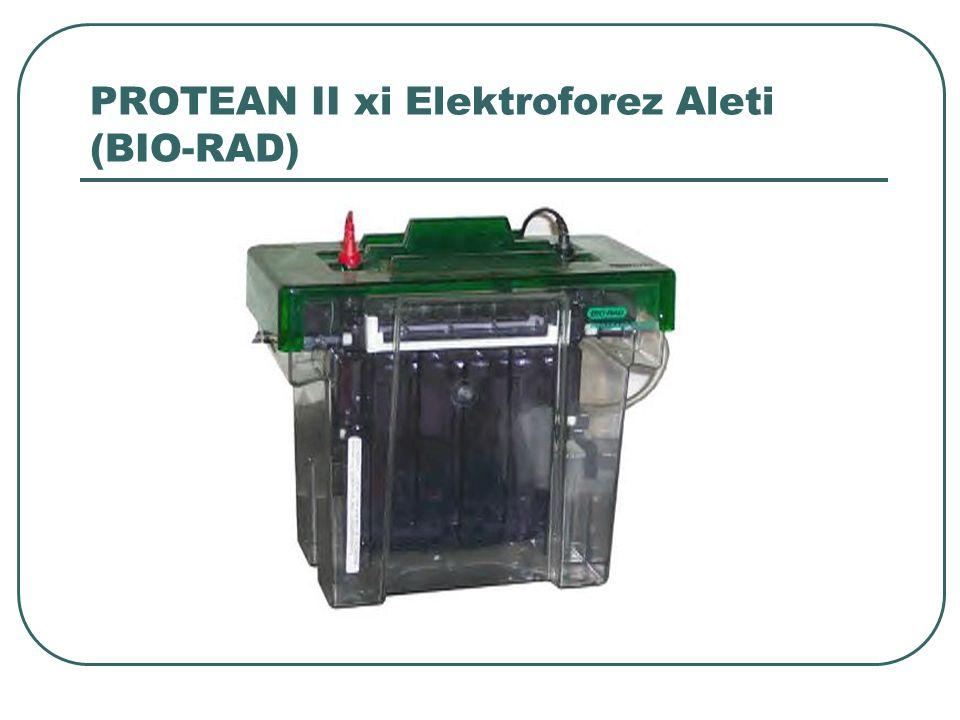 PROTEAN II xi Elektroforez Aleti (BIO-RAD)