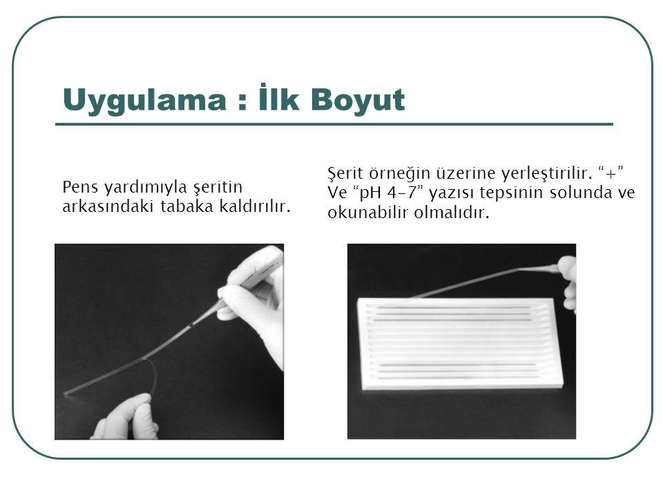 Uygulama : İlk Boyut Şerit örneğin üzerine yerleştirilir. +