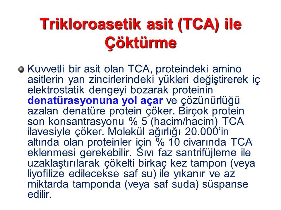 Trikloroasetik asit (TCA) ile Çöktürme