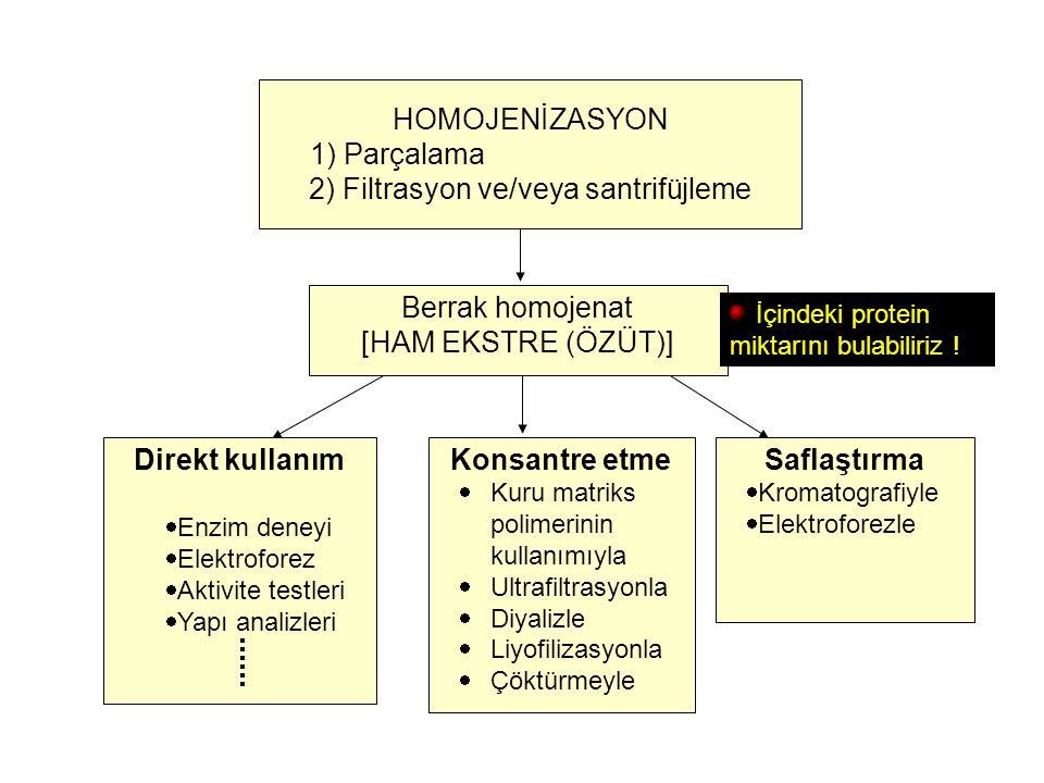 2) Filtrasyon ve/veya santrifüjleme