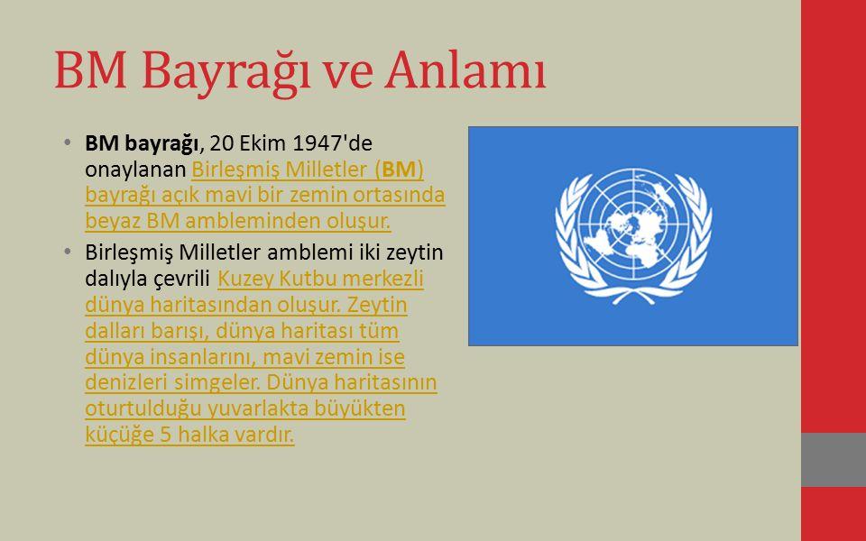 BM Bayrağı ve Anlamı