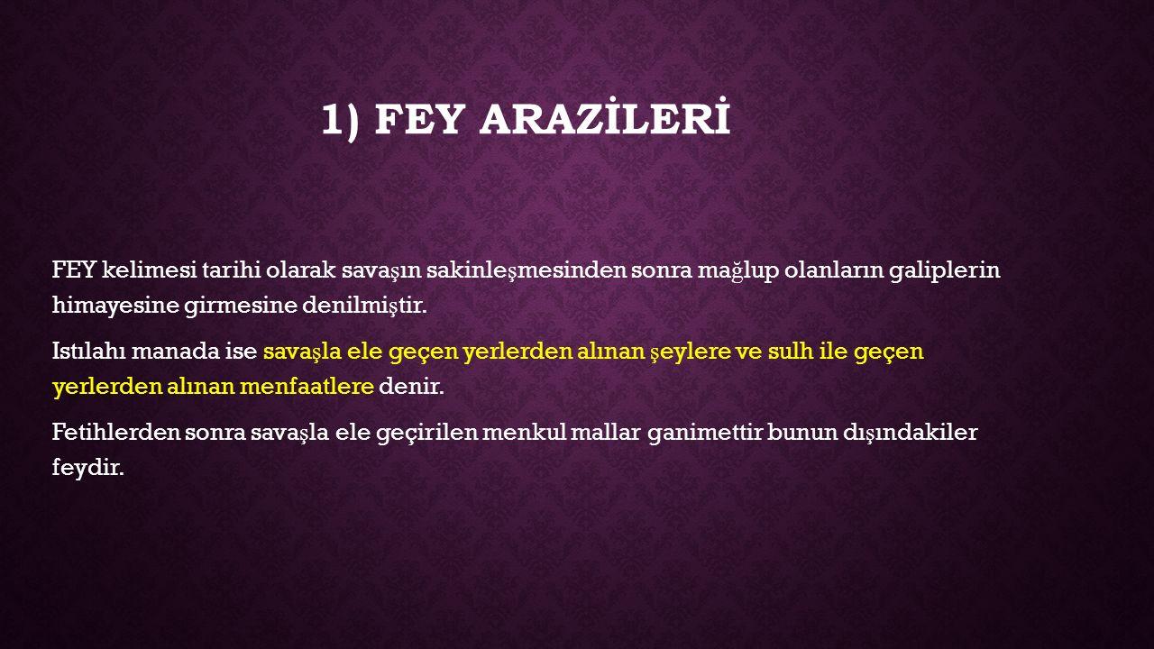 1) FEY ARAZİLERİ