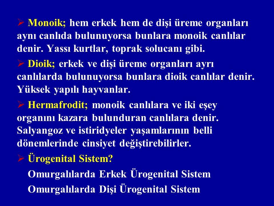 Monoik; hem erkek hem de dişi üreme organları aynı canlıda bulunuyorsa bunlara monoik canlılar denir. Yassı kurtlar, toprak solucanı gibi.