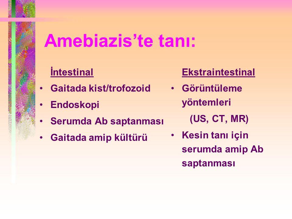 Amebiazis'te tanı: İntestinal Gaitada kist/trofozoid Endoskopi