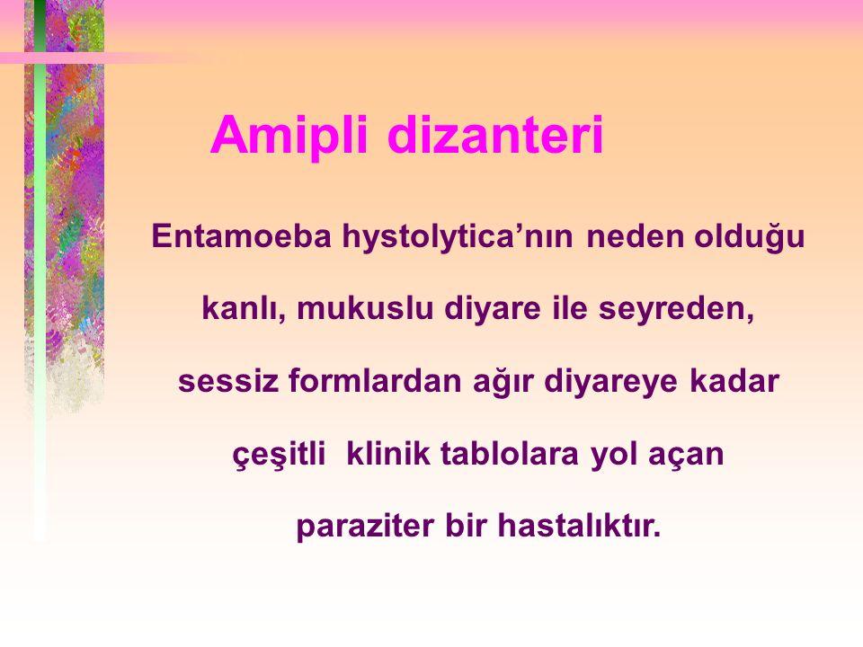 Amipli dizanteri Entamoeba hystolytica'nın neden olduğu