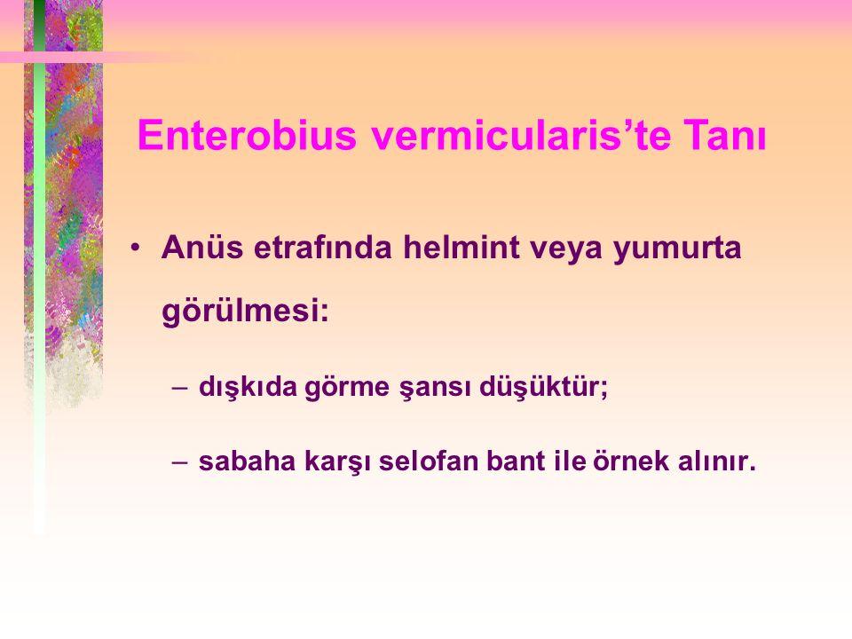 Enterobius vermicularis'te Tanı