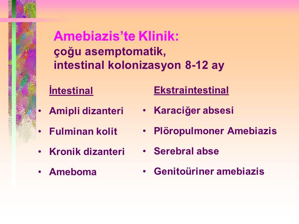 Amebiazis'te Klinik: çoğu asemptomatik, intestinal kolonizasyon 8-12 ay