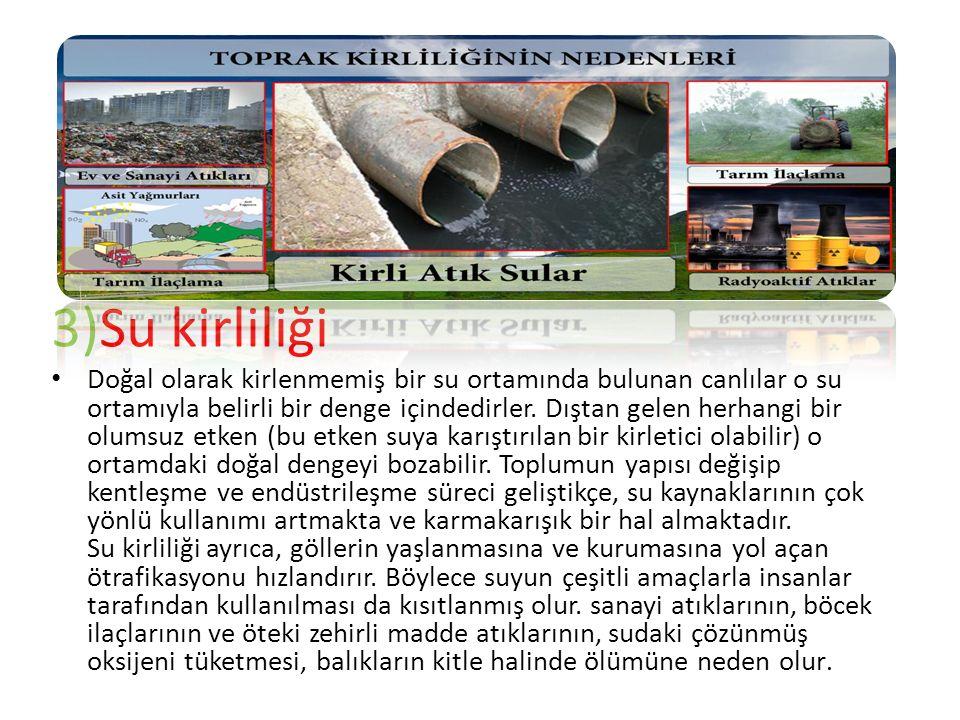 3)Su kirliliği