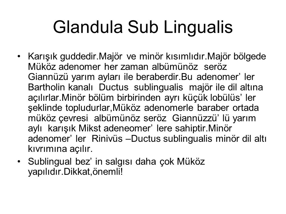 Glandula Sub Lingualis