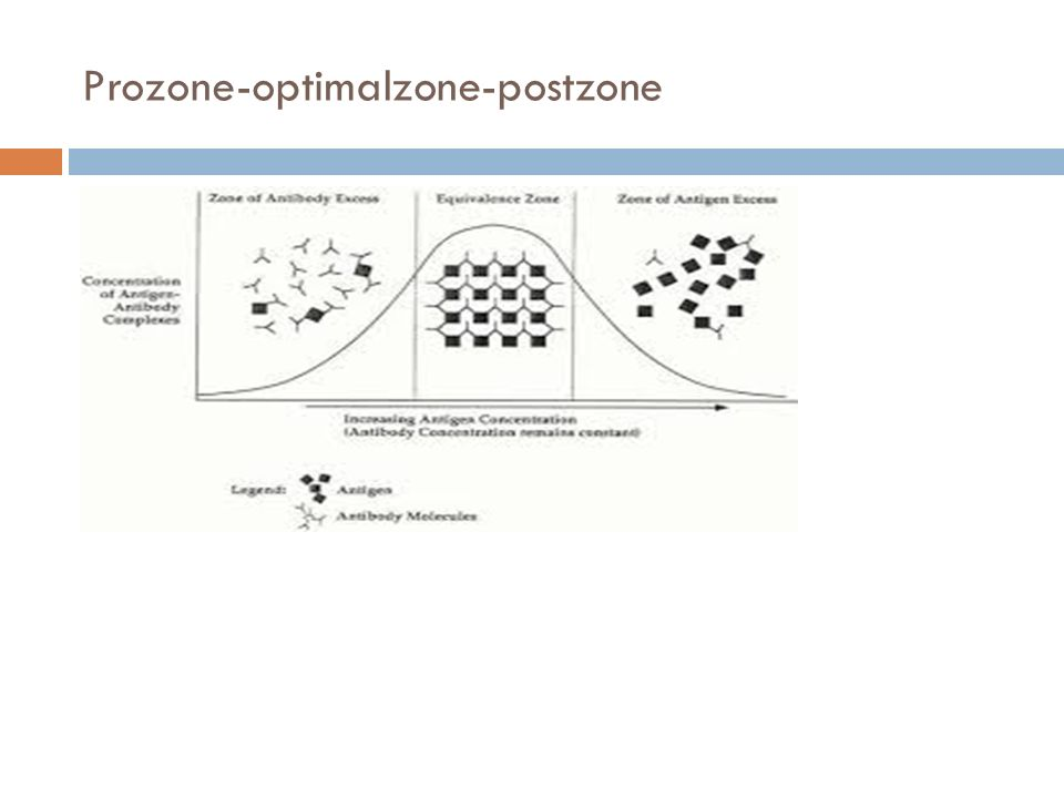 Prozone-optimalzone-postzone