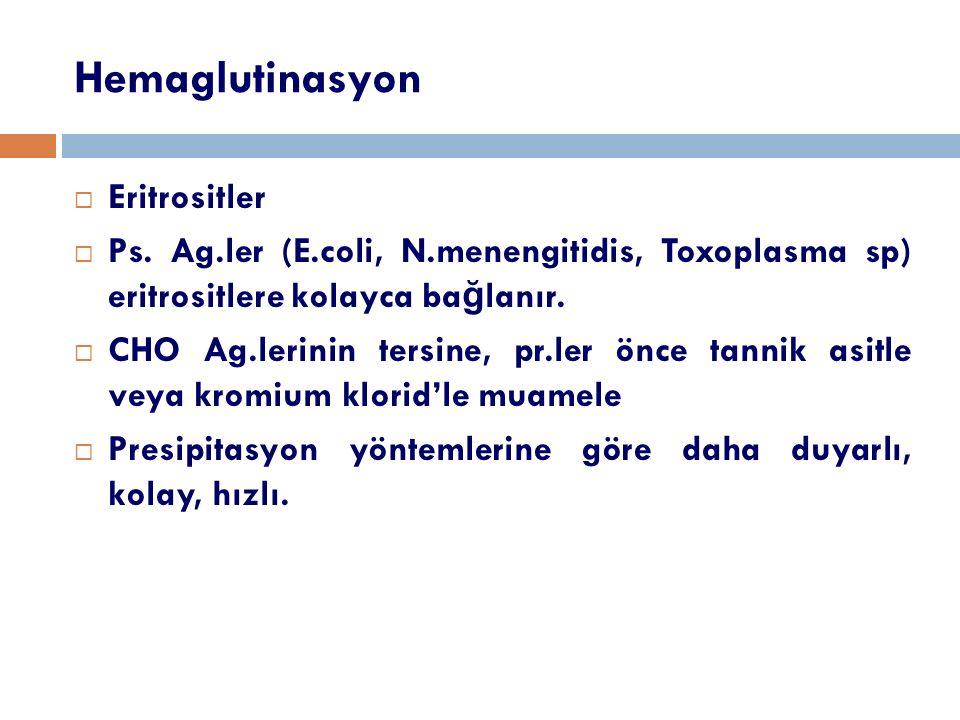 Hemaglutinasyon Eritrositler