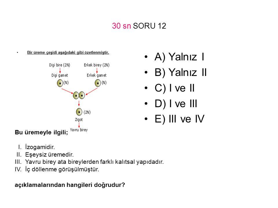 A) Yalnız I B) Yalnız II C) I ve II D) I ve III E) III ve IV