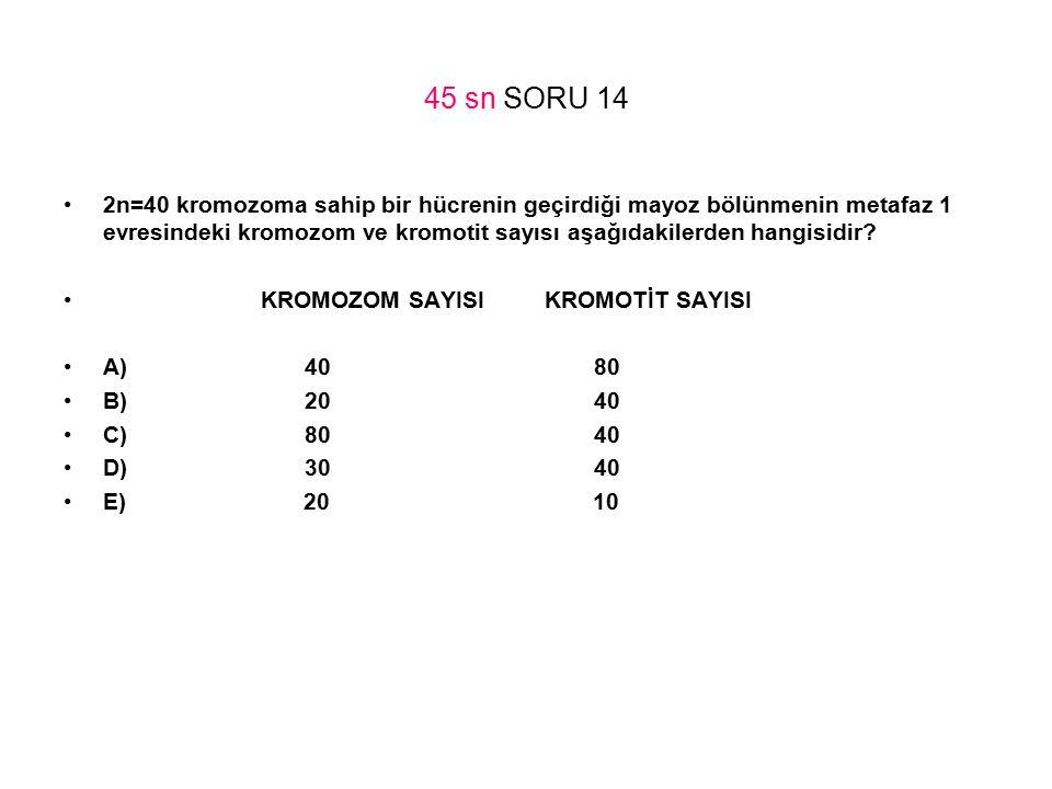 45 sn SORU 14